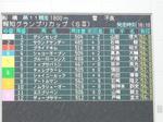 2008報知グランプリCパドック